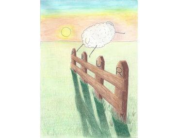 Émotions moutons